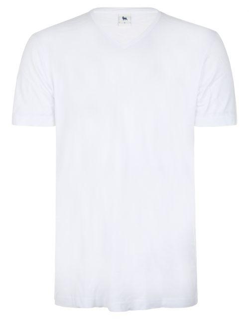 Bamboo T-shirt, V-neck, 2 pack